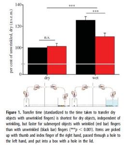 From Kareklas et al. (2013).